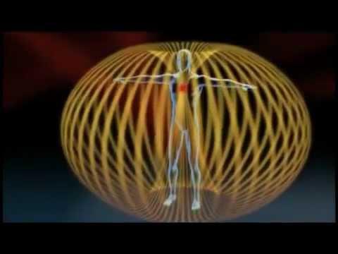 A Biorezonancia titka - 05. rész - Az Élő Mátrix