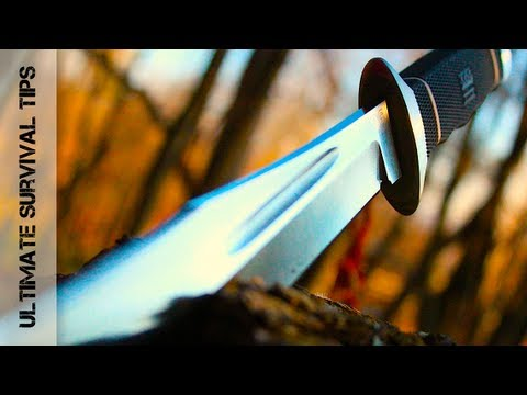 Wow! Beastly Blade! SOG Creed Knife - REVIEW