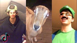 Funny TIK TOK Videos Compilation   Ironic Memes & Cringe