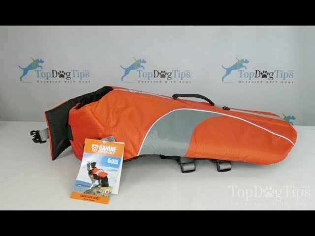 RC Pet Products Canine Friendly Life Jacket Review thumbnail