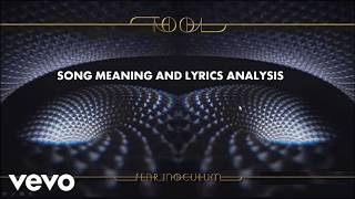 Tool Fear Inoculum | Song Meaning | Lyrics Breakdown