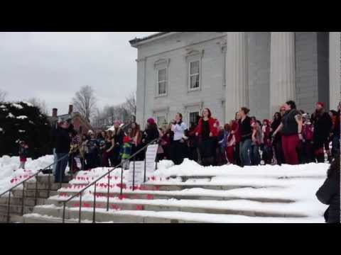 One Billion Rising - State House, Montpelier, VT