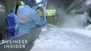 How Employees Kept A Puerto Rican Cheese Factory Running After Hurricane Maria
