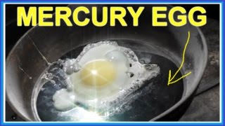 Can you cook an EGG on MERCURY (Hg) ??