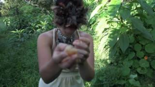 Watch White Hinterland Huron video