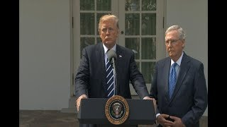 President Donald Trump, Sen. Mitch McConnell deliver statement from the Rose Garden