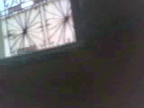 bnat fes 2009