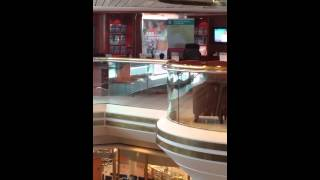 Royal Caribbean Cruise Majesty of the seas 2018384838