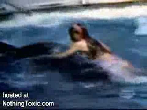 Killer Whale Attacks Unsuspecting Girl