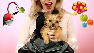 Testing Out WEIRD Dog Products with NEW TEACUP PUPPY! *So Cute*