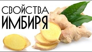 Полезные свойства имбиря для похудения