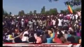 Developing stories on Amhara Protest, August 29 , 2016