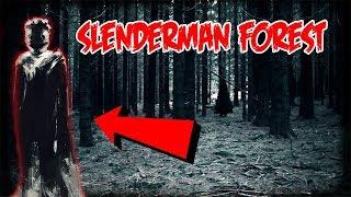I WENT SEARCHING FOR SLENDERMAN IN SLENDERMAN FOREST BUT SOMETHING ELSE CHASED ME