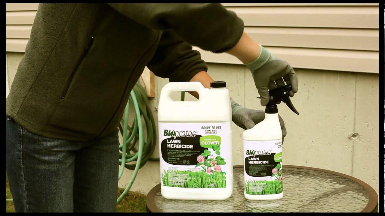Bioprotec herbicide pelouse pour tr fle instructions - Comment se debarrasser du lierre ...