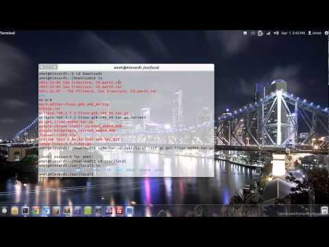Fácil y rápido: Instalar Google Go en Ubuntu 11.10 (o menores)