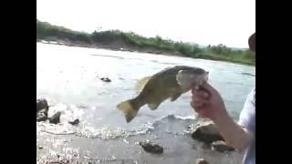 サワヤカ釣番組 阿武隈川