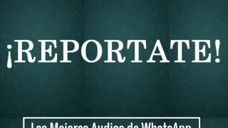 REPORTATE - Los Mejores Audios De WhatsApp