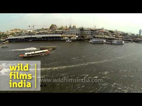 Express boats ferry passengers along Chao Phraya River : aerial footage