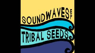 Watch Tribal Seeds In Your Eyes video