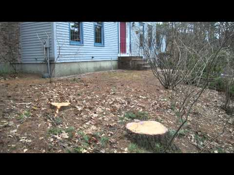 iMow Lawn Care Services Inc Bedford NH Lawn Renovation