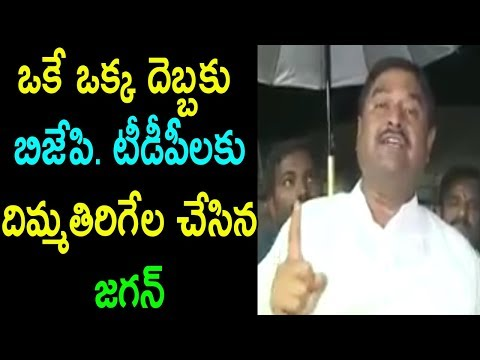 YSRCP Leader Dharmana About YS Jagan | Comments On BJP TDP AP Govt Rajyasabha | Cinema Politics