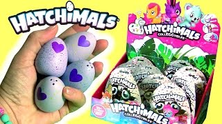 Hatchimals CollEGGtibles Color Changing Eggs Blind Bags by FunToys Disney Toy Review Channel