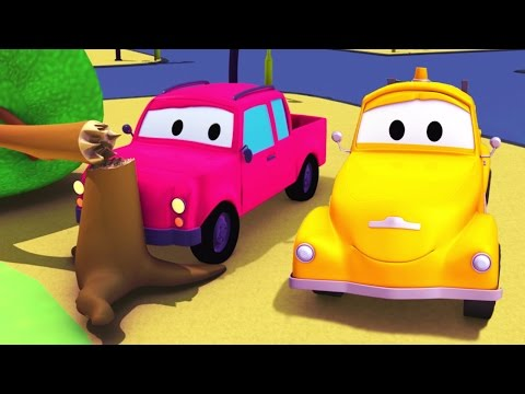 Tom The Tow Truck and the Pickup Truck in Car City | Trucks construction cartoon (for children)