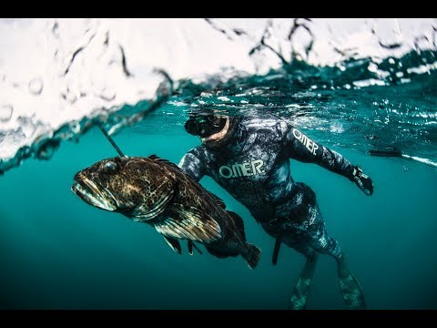 California Spearfishing by Dan Silveira - Omer Spearguns .m4v