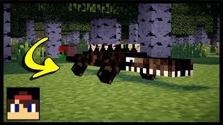✔ Minecraft: How To Spawn Alligator | MCPE (No Mods Or Addons!)
