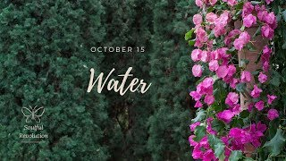 You're gonna have to do it yourself (again), WATER Sign October 15 Cancer Pisces Scorpio