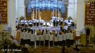 Translazzjoni u Koncelebrazzjoni Solenni ta' Lejlet il-Festa