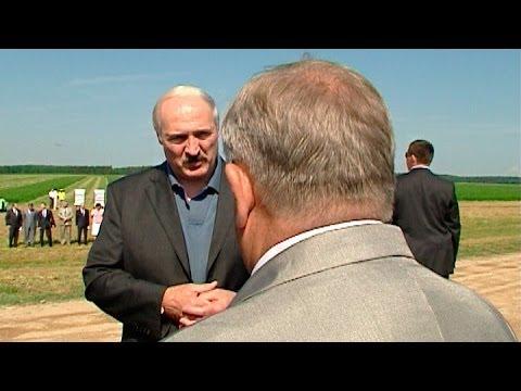 Лукашенко требует соблюдения железной дисциплины при заготовке кормов