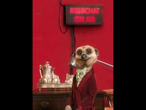 Meerchat No.2 - When Aleksandr Met Piers Morgan!