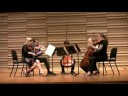 Schubert String Quintet, 1st mvt, Part 1
