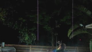 Drunk kid swinging off a tree