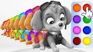 Learn Colors with Girly Google Pups Learning Flashy Color Animation for Baby Toddlers, Kids Part 4