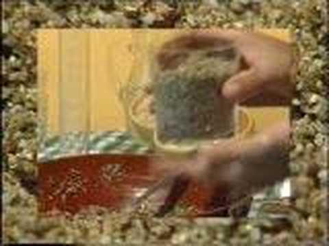 como cultivar HONGOS ALUCINOGENOS Video