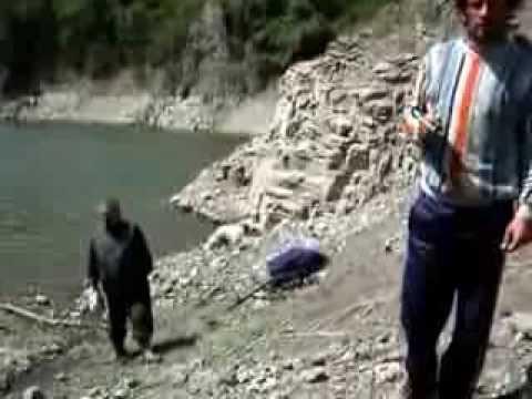 Ferhan YAZICI Yayın avı Samsun Ayvacık Hasan Uğurlu barajı