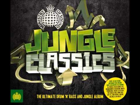 November 29, 2011 Drum And Bass Jungle Mash Up.wmv video