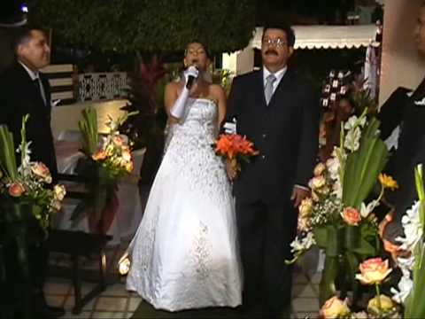 Surpresa no casamento Music Videos