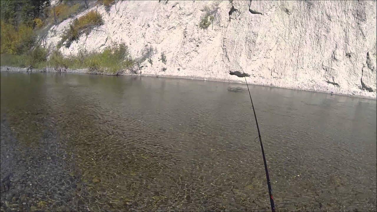 GoPro  Fishing Streams  Salmon Snagging
