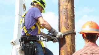 Ameren crews head to Florida