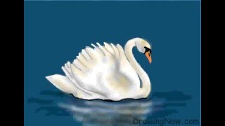 How To Draw A Swan