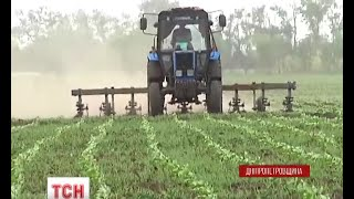 На Дніпропетровщині у селян вкрали понад 700 гектарів землі - (видео)