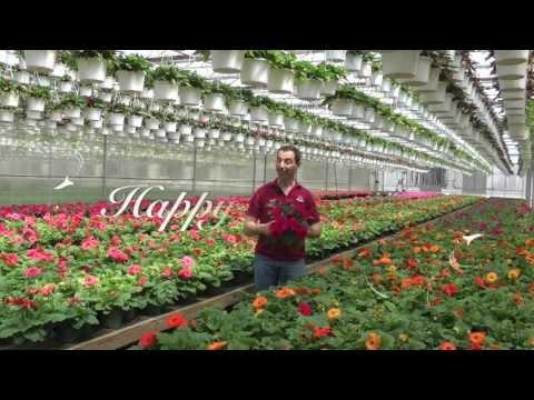 ShopRite Presents:  Spring Gardening Guide