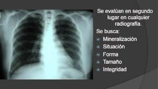 Fundamentos para Interpretación en Radiología General Simple