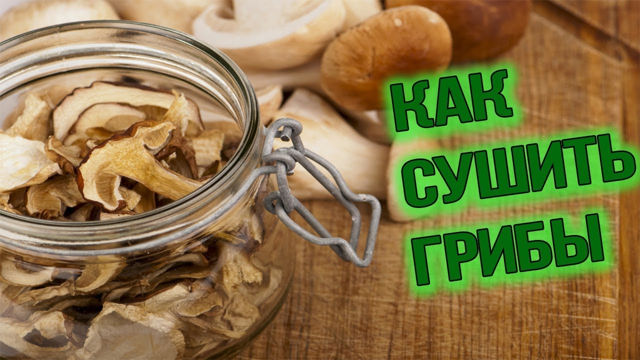 Сколько хранить сушеные грибы в домашних условиях 79