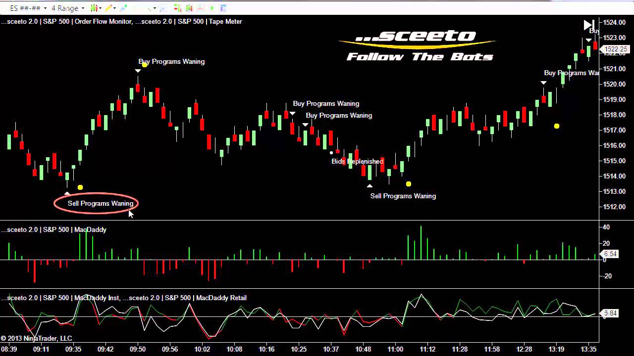 sceeto binary options