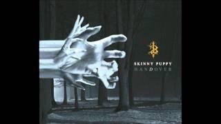 Watch Skinny Puppy Ashas video