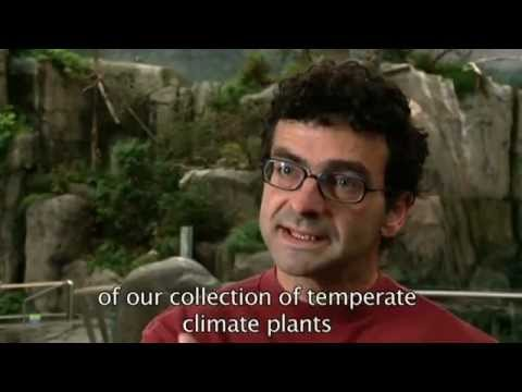 The Montréal's Nature Museums:Toward Greater Energy Efficiency.